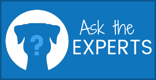 Ask the Experts at The Contemporary Pet!