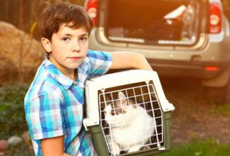Boy with cat in carrier getting ready to travel by car