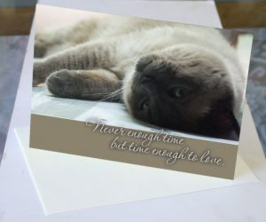 Pet Sympathy Cards by Bernadette often feature beautiful cat photography