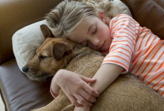 girl hugging dog on sofa is one of the best reasons to have a pet