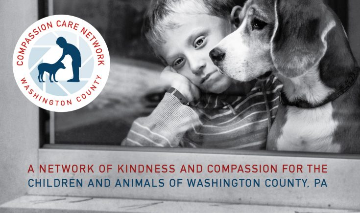The Compassion Care Network protects the children and pets in abuse situations, finding them loving, stable homes.