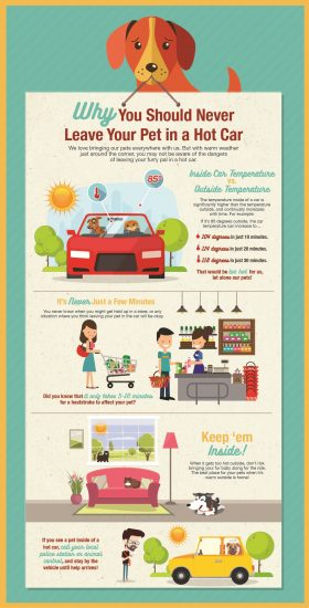 Don't leave your pet locked in car this summer. Even a few minutes is too long!