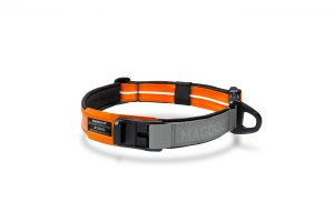 MAGDOG Collar in bright orange