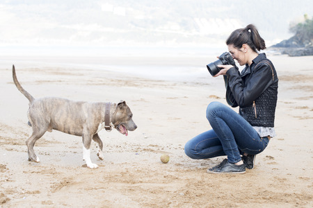 How to Take Great Pictures of Your Pet
