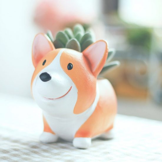 Little, handpainted Corgi planter with succulent in it.