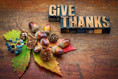 Give Thanks with leaves and berries on wood; be thankful