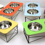 Raised pet bowls top the must have list of many senior dogs and cats.