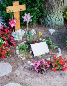 Disposing of a pet's body is often easier in rural areas, where burying in the back yard is possible.