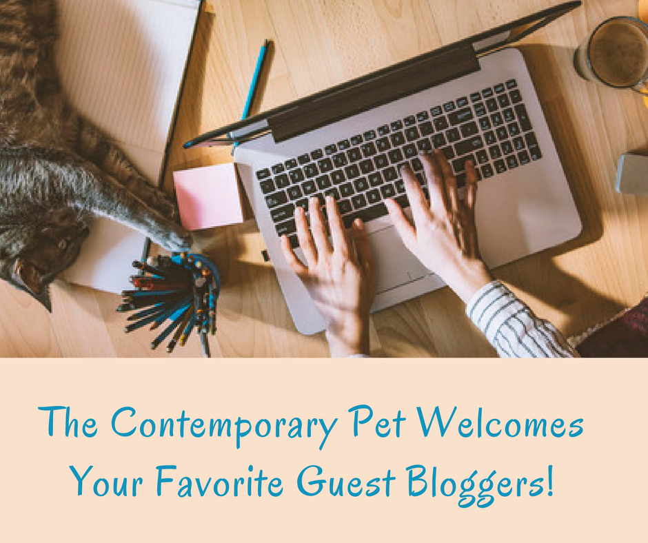 The Contemporary Pet Welcomes Your Favorite Guest Bloggers!